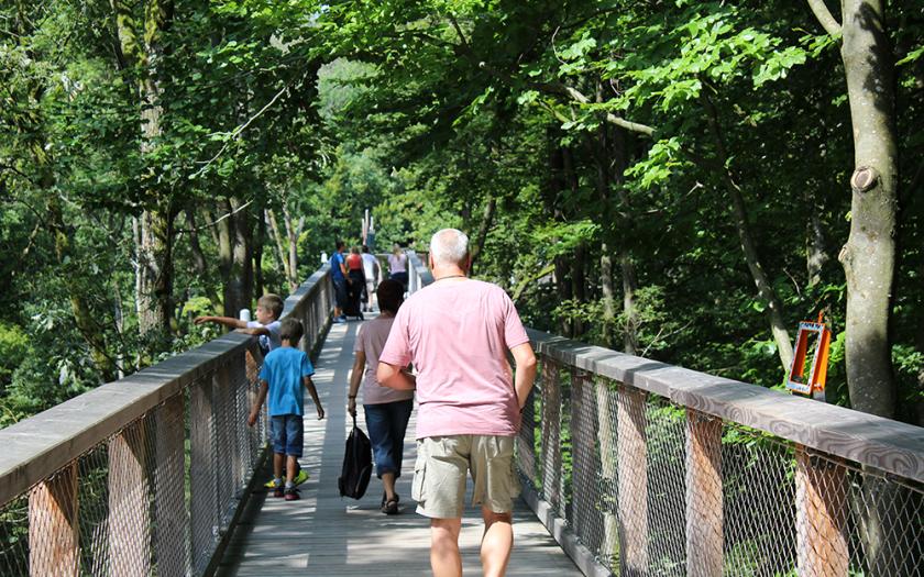 Baumwipfelpfad Steigerwald, oberfranken, Ebrach, Franken mit Kindern, Ausflugsziele fr Familien in Franken, Ausflugstipps für Kinder