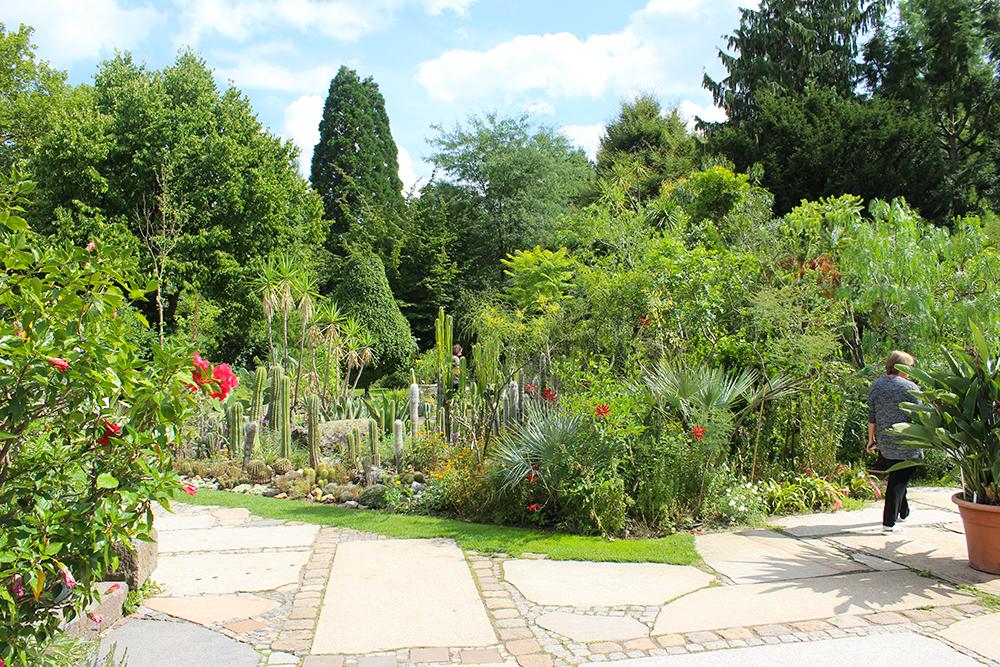 Botanischer Garten in Erlangen, Ausflugstipps in Mittelfranken, Franken mit Kindern, Natur mit Jugendlichen entdecken, Familienausflug in Franken