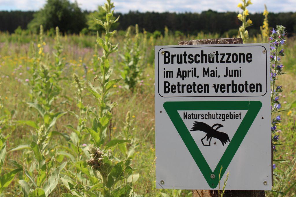 Familienausflug mit Kindern in den Hainberg bei Nürnberg, Fürth, Oberasbach, Spiel und Bolzplatz Oberasbach, Naturschutzgebiet in Franken mit Kindern